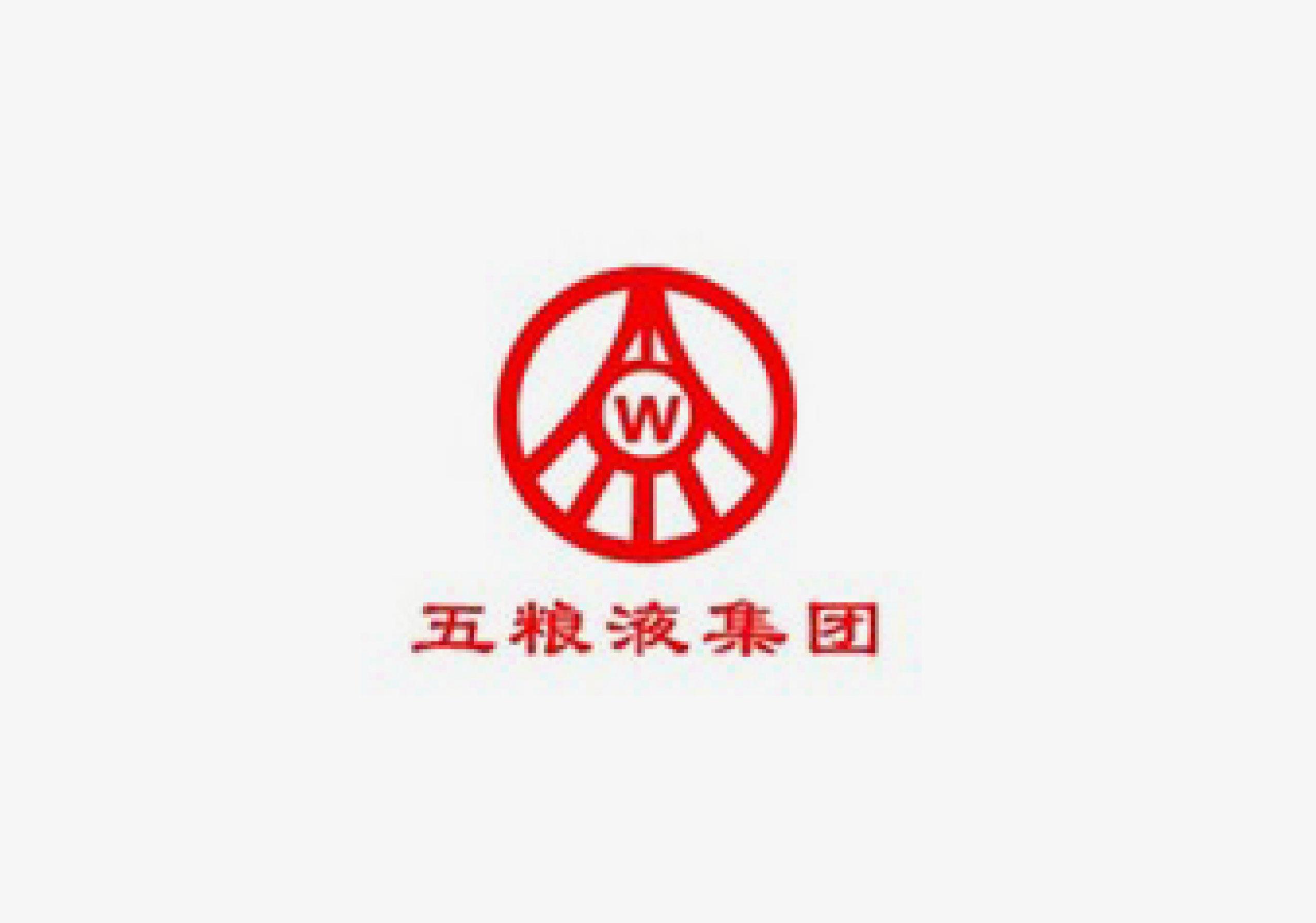 41五粮液-2015_广告设计_公司logo设计_vi系统__.